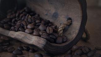 Kaffee - Bedeutendes Wirtschaftsgut - fair4world