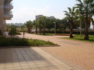 Jardins privés avec acces directe a la plage