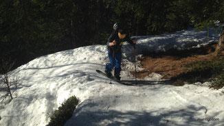 ... ein schmales Schneeband ist im Wald gerade noch vorhanden