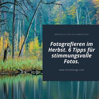 Fotografieren im Herbst. In unserem kreativen Blog verraten wir Dir 6 Tipps, wie stimmungsvolle Fotos im Herbst gelingen.