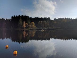 Ferienwohnung Scheidegg | Waldsee