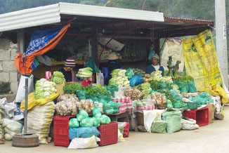 Die Nord- Kordillere nennt man auch die Salatschüssel der Philippinen , da hier im kühlen Klima das meiste Gemüse der Philippinen angebaut wird .