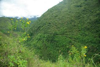 Auf der anderen Seite ging es dann wieder hoch und wir hatten nun endlich Buscalan erreicht. Man kann auf der anderen Seite schön den kleinen Pfad in Dschungel erkennen.