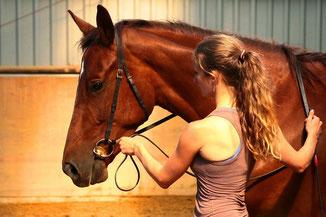 Pferd, Handarbeit, Legerete, Philippe Karl