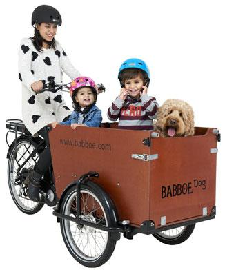 Babboe Dog-E Lasten e-Bike, Lastenfahrrad mit Elektromotor, e-Cargobike 2020
