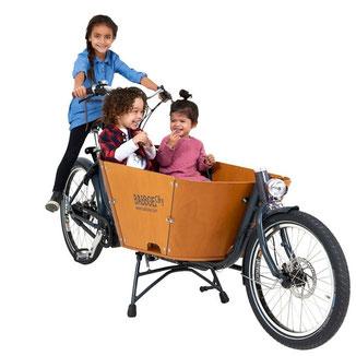 Babboe City Mountain Lasten e-Bike, Lastenfahrrad mit Elektromotor, e-Cargobike 2020