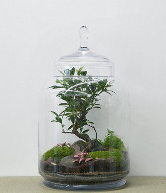 "GreenLab ""Jungle Jar"" von dem Pariser Atelier Green Factory. www-the-golden-rabbit.de"