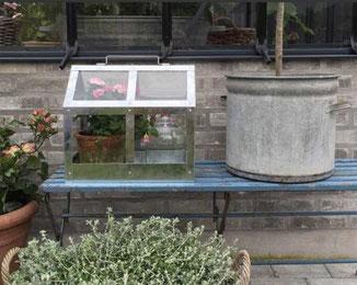 Kleines Gewächshaus für innen und außen bei www.the-golden-rabbit.de