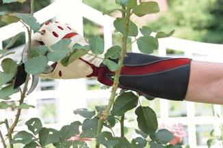 Bionic Rosenhandschuhe - die besten Lederhandschuhe für den Garten bei www.the-golden-rabbit.de