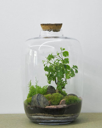 GreenLab Forest medium von dem Pariser Atelier Green Factory. www-the-golden-rabbit.de