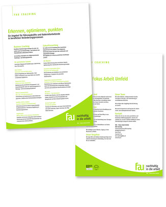 Flyer Privatpersonen Publikation FAU – Fokus Arbeit Umfeld