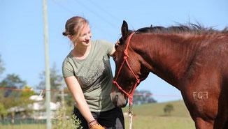 Leichter Umgang mit dem Pferd