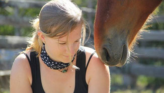 Abenteuer Wildpferde in Australien zähmen