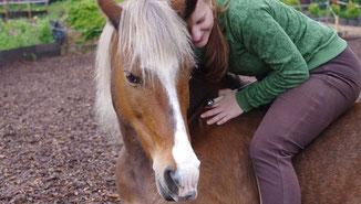Herzöffnung mit Hilfe von Pferden