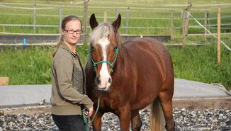 Pferde situationsabhängig führen