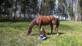 Lieberklärung an ein Pferd