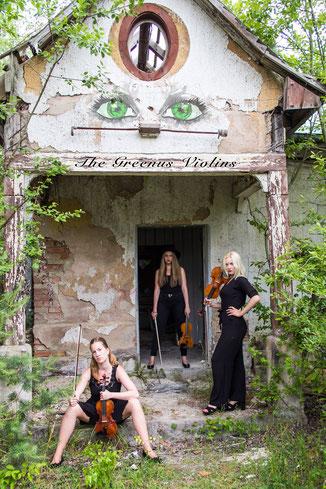 The Greenus Violins