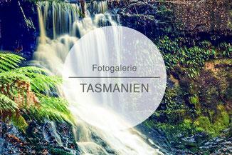Fotogalerie, Bilder, Tasmanien
