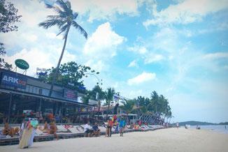 Koh Samui, Thailand, Strand, Palme, Die Traumreiser