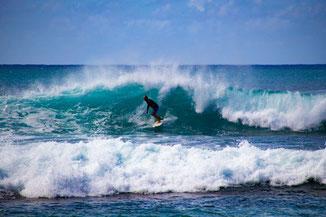 Nordküste Oahu, Strand, Oahu, Hawaii, USA, Strand, Die Traumreiser, Surfer, Surfing