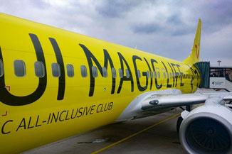 Teneriffa, Kanarische Inseln, Die Traumreiser, Anreise, TUI Fly
