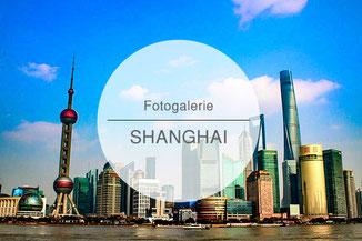 Fotogalerie, Bilder, Shanghai