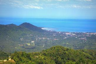 Koh Samui, Thailand, Meer, Palme, Die Traumreiser