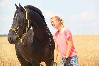 Freiarbeit, Horsemanship