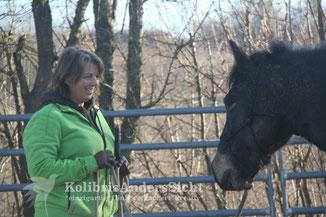 Problempferdekorrektur, Schrecktraining, Horsemanship