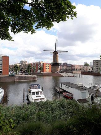 Eine Windmühle inmitten der Stadt...