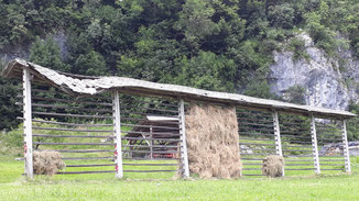 Eine Grastrocknungsanlage...