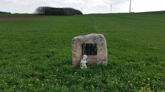 Ein Ehepaar wurde hier von einem Blitz erschlagen - wo ist dieser Stein zu finden?