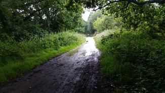 Und der Weg war so schön trocken...