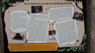 Die Geschichte von Karl Kater...