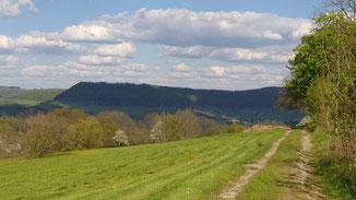 Feldweg Richtung Grünenberg