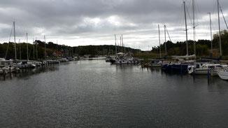 Die Schiffe bleiben heute im Hafen... das Wetter lädt ja auch nicht unbedingt zu einem Segeltörn ein...