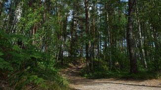Klapkalnciems, Ostsee