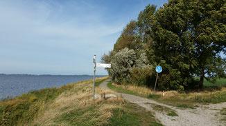 Hinter mir 80 km - vor mir 10 km - da lacht das Herz (und auch mein Hinterteil)...