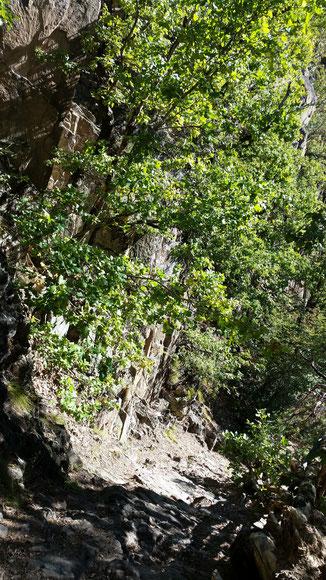 Steig oberhalb von Leifers