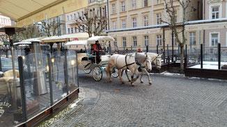 Die Pferdekutschen erinnern an Wien...