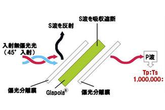 例:Glapola+偏光分離膜