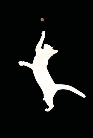 The White Cat III