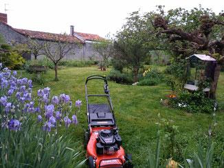 tonte pelouse espace vert entretien jardin saint gaudens lannemezan