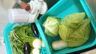 素粒水:新鮮保存野菜 千葉県鎌ヶ谷市ショッピング 健康の店はしもと