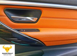 Lederreinigung und Lederpflege für das gesamte Lederinterieur im Fahrzeuginnenraum.