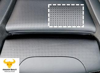 Lederreinigung und Lederpflege von perforiertem Sport Ledersitz. Perforiertes Autoleder professionell reinigen und pflegen mit Golden Bull Autopflege-Produkten.