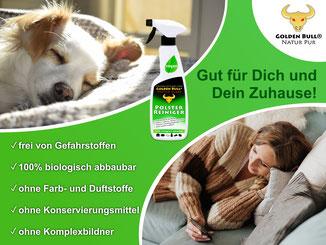 Helle bzw. weiße Polstermöbel wie dieses Stoffsofa können mit Golden Bull Textile Clean effektiv gereinigt werden.