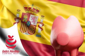 Carne de cerdo de España