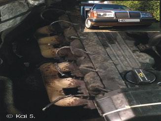 Dieses Schmuckstück hatte einen Marder im Auto (Motor)