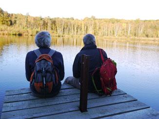 Des étangs et des forêts jalonnent ce parcours